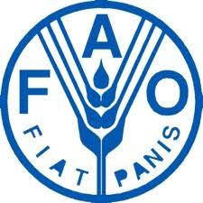 La FAO fait de la réduction du gaspillage alimentaire une priorité. DR