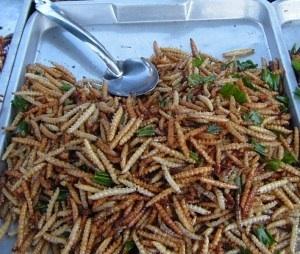 La fricassée d'insectes : nouvelle recette pour nourrir la planète. DR