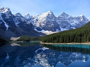 Malgré la présence des sables bitumeux la région de l'Alberta est particulièrement riche en biodiversité. DR