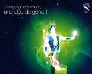 Fête des Lumières, Lyon, Recyclum, luminaires, éclairages, écologie, énergies renouvelables, développement durable, urbanisme