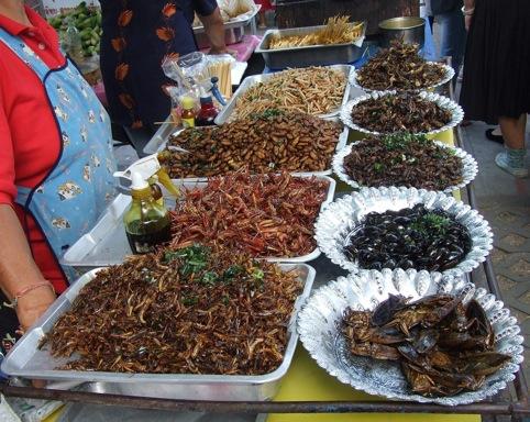 Les insectes s'inscrivent dans les régimes alimentaires traditionnels d'au moins deux milliards de personnes.