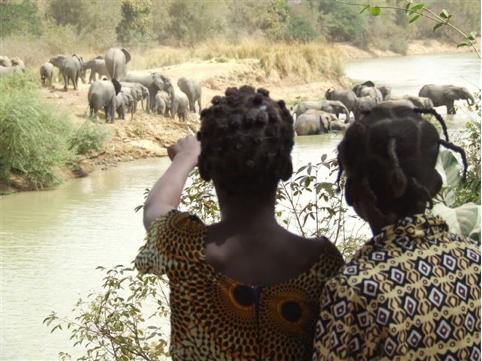 l'association Des Éléphants & des Hommes œuvre pour une coexistence harmonieuse entre l'homme et l'éléphant. Crédit photo : Laure Berthon