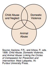 les violences domestiques, la maltraitance infantile et la maltraitance animale sont interconnectées, d'après Ascione et Arkow.