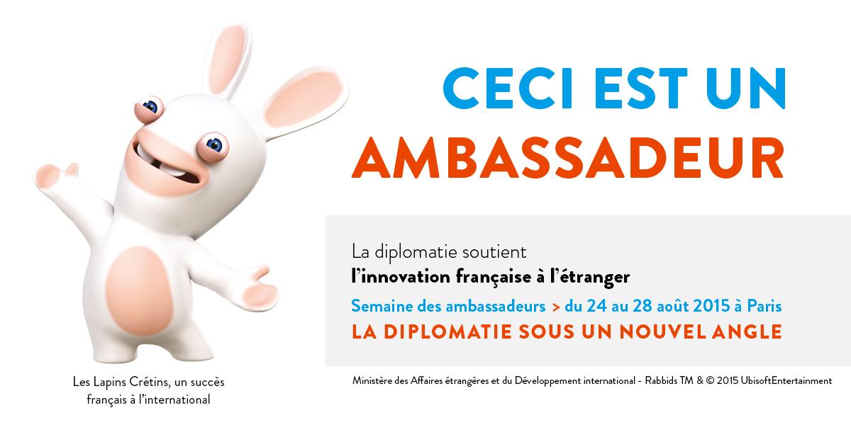 campagne-ambass_lapins_cretins_paysage