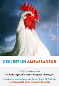 campagne-portrait-2