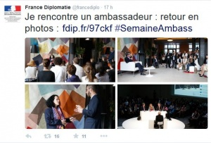 Capture d'écran du compte Twitter de France Diplomatie