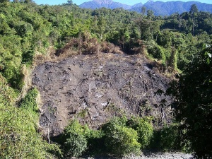 57% Des terres indiennes sont aujourd'hui dégradées. - Crédit : Prashanthns / Wikimedia Commons