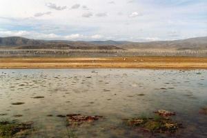 Le lac Poopó, en Bolivie. - Crédits : Olivier Hodac, Creative Commons