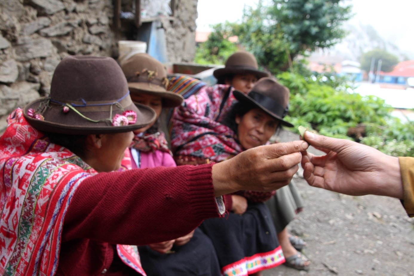 Communauté andine de Choquequancha, district de Lares, région de Cusco. Crédit photo : Victor Charruaud
