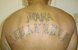Tatouage d'un membre de la Mara Salvatrucha. Domaine public