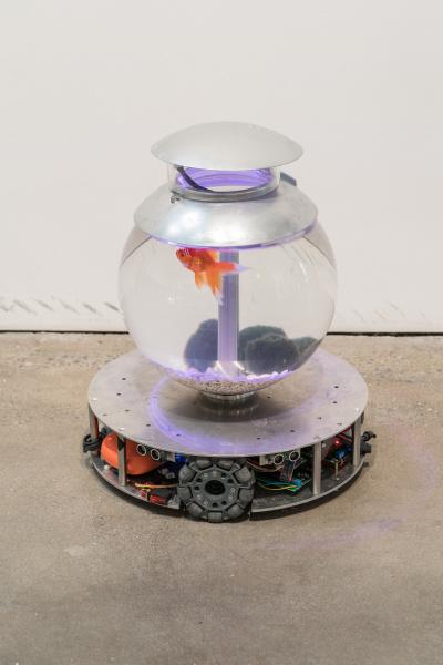 Chando Ao_I'm a FishImage courtesy of YveYANG Gallery