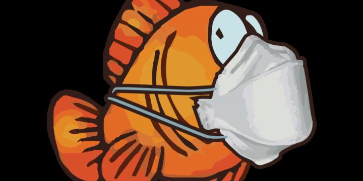 Corona-Blagues : retour sur les meilleurs poissons d'avril contre le coronavirus - Opinion Internationale